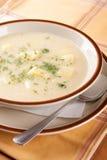 Домодельный суп sauerkraut, сливк и картошек стоковые изображения rf