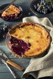 Домодельный сладостный пирог виноградины согласия Стоковое Фото