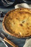 Домодельный сладостный пирог виноградины согласия Стоковое Изображение