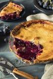Домодельный сладостный пирог виноградины согласия Стоковые Изображения