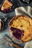 Домодельный сладостный пирог виноградины согласия Стоковые Фотографии RF