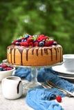 Домодельный торт губки лета с cream и свежими ягодами Стоковое Фото