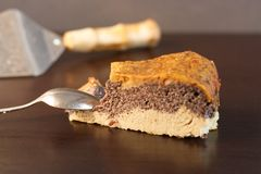Домодельный торт макового семенени сделанный от paleo и вегетарианских дружелюбных ингридиентов Стоковое Изображение