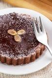 Домодельный торт пирога сыра шоколада Стоковая Фотография