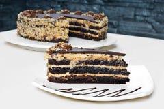 Домодельный торт фундука шоколада Стоковые Изображения RF