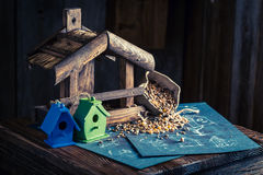Домодельный фидер для птиц и плана строительства Стоковые Изображения RF