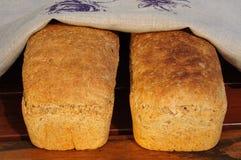 Домодельный хлеб Стоковое фото RF
