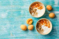 Домодельный югурт с гайками granola, абрикоса и сосны стоковые фотографии rf