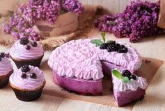 Домодельный blackerry фиолетовый торт суфла стоковое фото
