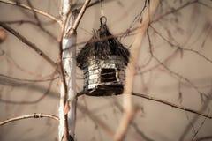 Дом березы Стоковое Фото