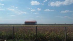 Дом Брайна кукурузным полем небом Стоковое Изображение RF