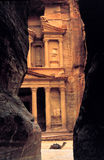 дом верблюда передняя Стоковое Изображение
