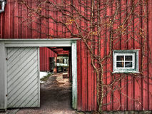 Дом Викинга, музей Осло фольклорный, Норвегия Стоковое Изображение