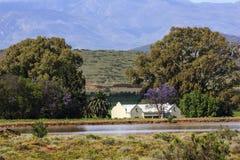 Дом в виноградниках Стоковые Изображения RF