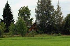 Дом в деревне среди деревьев стоковое изображение rf
