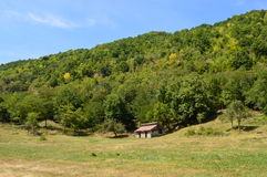 Дом в лесе в горных областях в Transilvania, (4) Стоковое Изображение RF