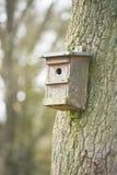 Дом вложенности для птиц вися на дереве Стоковая Фотография