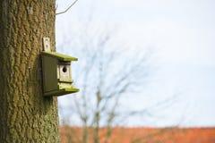 Дом вложенности для птиц вися на дереве Стоковые Изображения RF