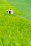 Дом в поле Стоковая Фотография