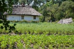 Дом в селе Стоковое Изображение