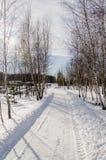 Дом в снежной украинской деревне Стоковые Изображения