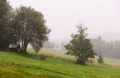 Дом в тумане Стоковая Фотография RF