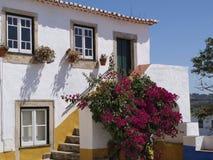 Дом в цветках Стоковое Фото