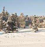 Дом в шотландских гористых местностях Стоковое Фото