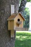 Дом для птиц на дереве стоковая фотография rf