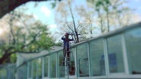 Дом девушки работника моя стеклянный с высоким давлением видеоматериал