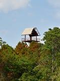 Дом лесного дерева башни Стоковая Фотография