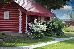 Дом журнала и белый куст гортензии в саде Стоковые Изображения RF