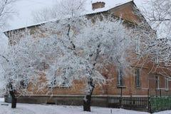 Дом зимы Стоковая Фотография RF