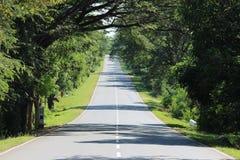 Дом длинного пути стоковое изображение rf