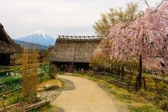 Дом и Сакура соломы с mt fuji Стоковая Фотография RF