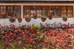 Дом и цветочный сад Стоковые Изображения RF