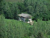Дом между деревьями, Иран, Gilan стоковое изображение