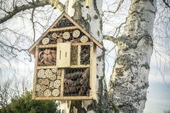 Дом насекомого на дереве Стоковые Изображения