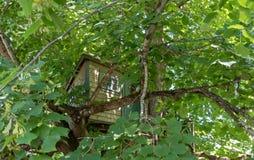 Дом на дереве высокий вверх в зеленом дереве Стоковое Изображение