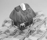 Дом на деньгах Стоковые Изображения