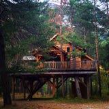 Дом на дереве в Alpes Стоковое Изображение RF