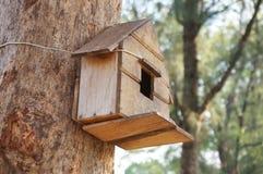 Дом на дереве для птицы Стоковое фото RF