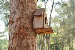 Дом на дереве для птицы Стоковые Изображения