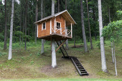 Дом на дереве Стоковое фото RF