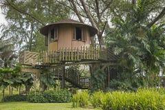 Дом на дереве Стоковые Изображения RF