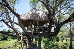 Дом на дереве стоковое фото
