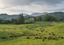 Дом на пути Cumbria Стоковое Фото