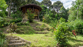 Дом озера на крае джунглей Стоковое Изображение RF