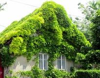 Дом от сказки Стоковое Изображение RF