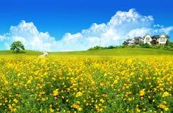 дом поля зеленая славная Стоковое Фото